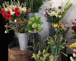 Fleurs coupées - Albertville - JULALIE