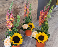 Compositions florales - JULALIE