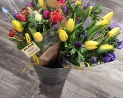Bouquet tulipes - Albertville - Julalie